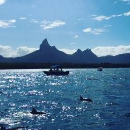 A week in Mauritius
